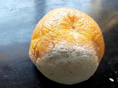 - Citrus